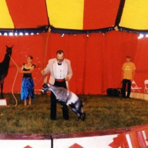 Mixed animal act. Reynolds Family Circus